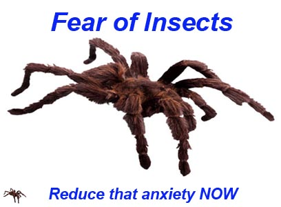fear-of-insects.jpg