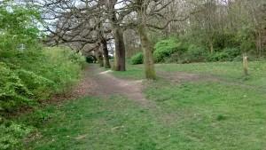whitby park 17 a